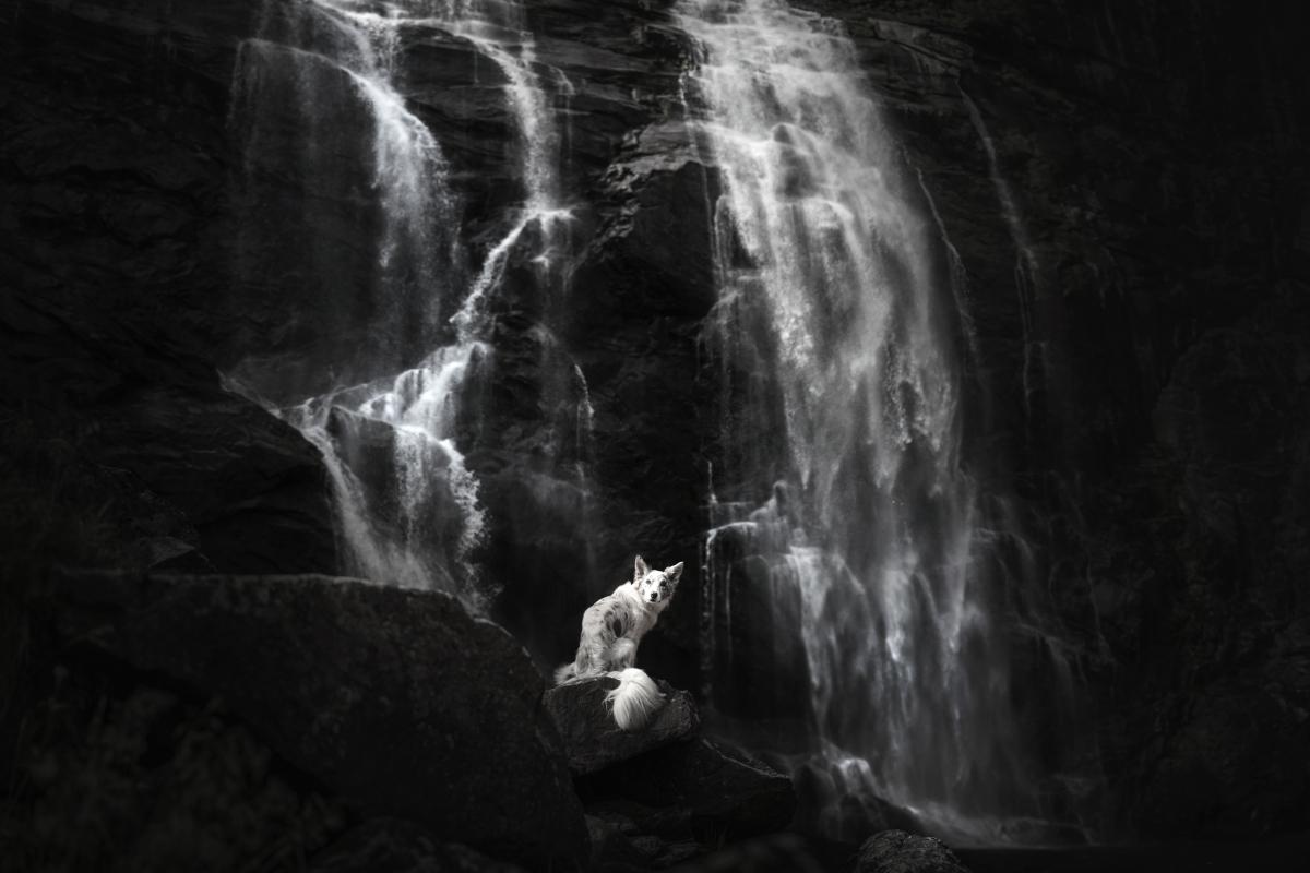 Ciri-i-Wodospad-Skjervfossen-w-Norwegii