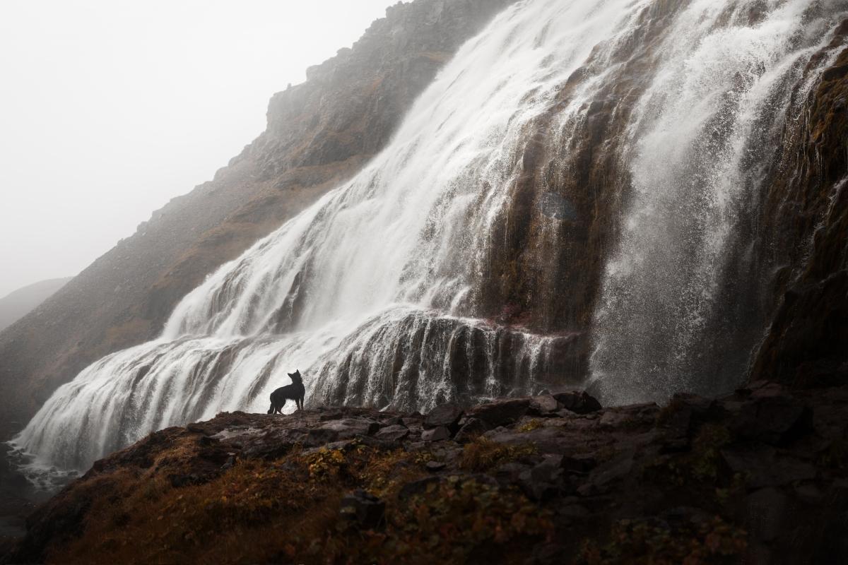 Wodospady-Islandii-1