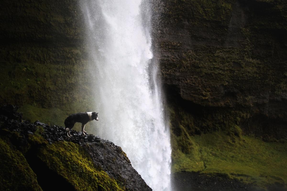 Wodospady-Islandii-3